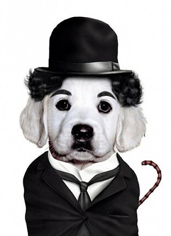 TeNeues-Charlie-Chaplin