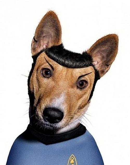 TeNeues-Spock