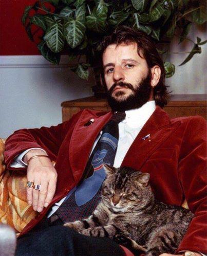 2-ringo-star-cat-old-pic-photo-fotos-vintage-fotografia